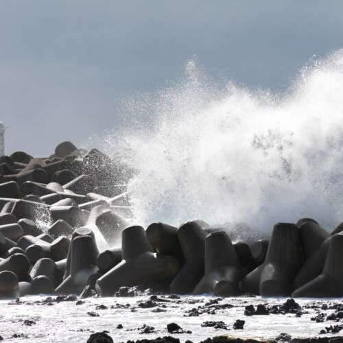tetrapod and wave